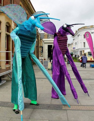 gallery bug stilts