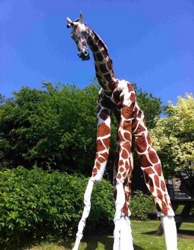 giraffe optomised